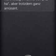 20130830 Siri's Answer To Glass